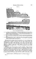 Pagina 337