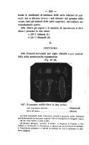 Pagina 240
