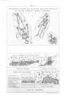 Pagina 350