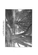 Pagina 56