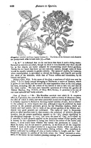 Pagina 468