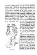 Pagina 1026
