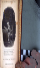 Pagina 250