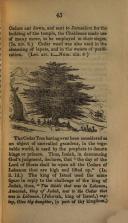 Pagina 45