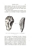 Pagina 371
