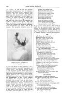Pagina 582