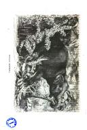Pagina 718
