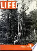 29 ott 1945